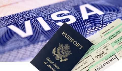 Introduce Visa Services