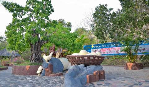 Binh Chau hot mineral springs