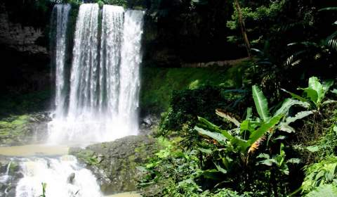 Đambri Waterfall